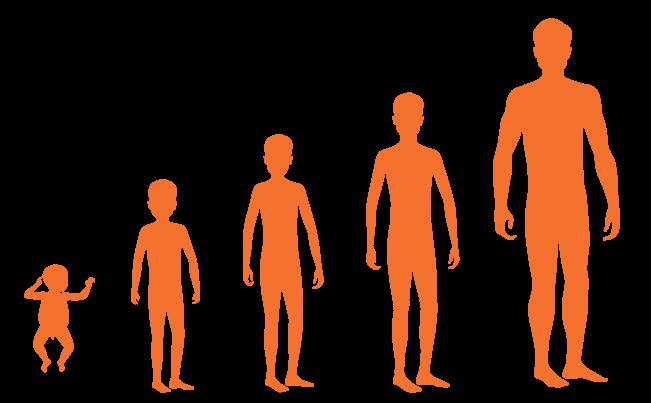 male-puberty